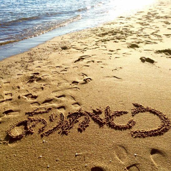 ストレス耐性を高める~今日から「ありがとう」が変わる